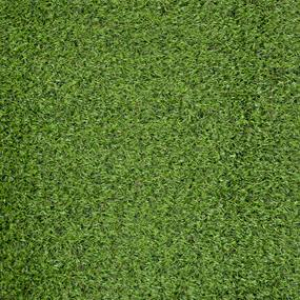 Artificial Grass - Bute 20mm Thick Dual Colour
