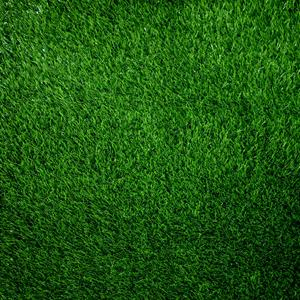 Artificial Grass Remnant Offcut Loxton 25mm Thick 5.9m x 2m