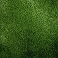Artificial Grass Luxury Taunton 34mm Thick Tricolour - WAS £18 - 2M WIDE ONLY
