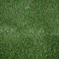 Artificial Lawn Luxury Yarrow 31mm Thick