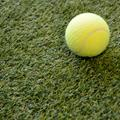 Artificial Grass Remnant Offcut Marla 20mm Thick Tri Colour 2m x 2m