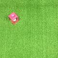 Artificial Grass Remnant Offcut Putting Green Bude 12mm Thick Curly Pile 2.7m x 4m
