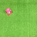 Artificial Grass Bude 12mm Curly Pile - REDUCED - 2m WIDE ONLY